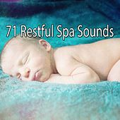 71 Restful Spa Sounds von Best Relaxing SPA Music