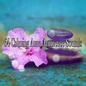64 Calming Aura Ambience Sounds von Massage Therapy Music
