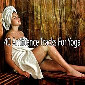 40 Ambience Tracks For Yoga by Yoga Workout Music (1)