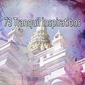 73 Tranquil Inspirations de Nature Sounds Artists