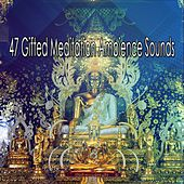 47 Gifted Meditation Ambience Sounds von Massage Therapy Music