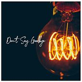 Don't Say Goodbye de Landon Austin