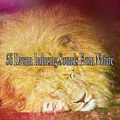 56 Dream Inducing Sounds From Nature by Relaxing Spa Music