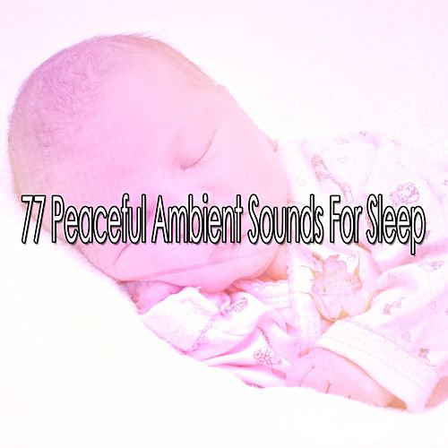 77 Peaceful Ambient Sounds For Sleep by Lullaby Land