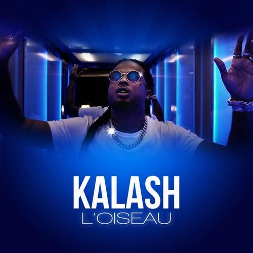 L'oiseau de Kalash