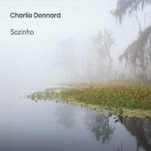Sozinho by Charlie Dennard