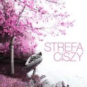 Strefa ciszy by Various Artists