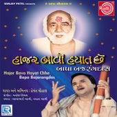 Hajar Bavo Hayat Chhe Bapa Bajarangdas by Hemant Chauhan