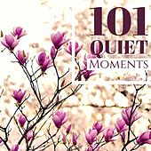 101 Quiet Moments - Songs for Miraculous Therapy, Finding Your Happiness with Love de Quiet Moments