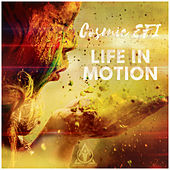 Life in Motion de Cosmic EFI
