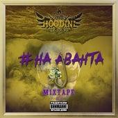 На аванта III by Hoodini