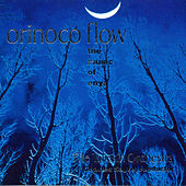 Orinoco Flow - The Music of Enya by The Taliesin Orchestra