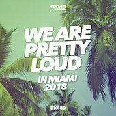 We Are Pretty Loud in Miami 2018 (by 120dB & IONIC Records) by Various Artists