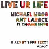 Live Ur Life by ANT LaROCK