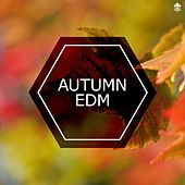 Autumn EDM by Various Artists