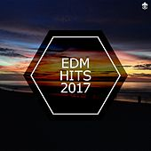 EDM Hits 2017 by Various Artists