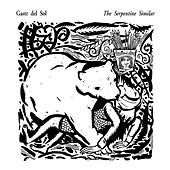 The Serpentine Similar by Gastr del Sol