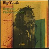 Phenomenon 1973-1975 by Big Youth