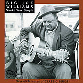Shake Your Boogie de Big Joe Williams