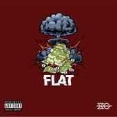Flat de Slow Gang