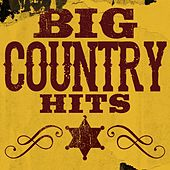 Big Country Hits de Various Artists
