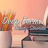 Deep Focus Study Sounds by Various Artists