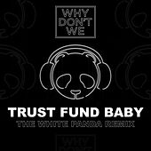 Trust Fund Baby (The White Panda Remix) by Why Don't We