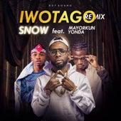 Iwotago (Remix) by Snow