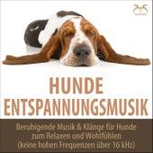 Hunde Entspannungsmusik - Beruhigende Musik & Klänge für Hunde zum Relaxen und Wohlfühlen (kein von Torsten Abrolat