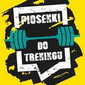 Piosenki do treningu by Various Artists