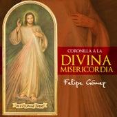 Coronilla a la Divina Misericordia de Felipe Gomez