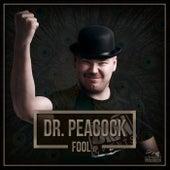 Fool - Single de Dr. Peacock
