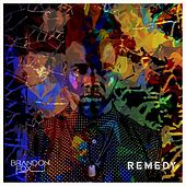 Remedy by Brandon Fox