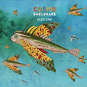 Pliocene by Cosmo Sheldrake