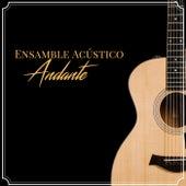 Ensamble Acústico Andante by Ensamble Acústico Andante