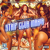 Strip Club Mania, Vol. 1 by Various Artists