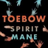 Spirit Mane von Toebow