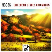Different Styles and Moods, Vol. 2 de Various Artists