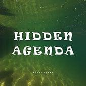 Hidden Agenda von Alexuspete