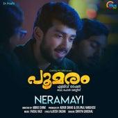 Neramayi (From