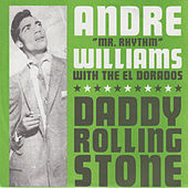 Daddy Rolling Stone / Gin de Andre Williams
