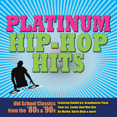 Platinum Hip Hop Hits (Re-Recorded / Remastered Versions) by Various Artists
