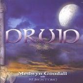 Druid II by Medwyn Goodall