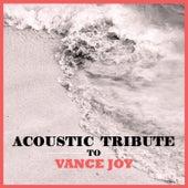 Acoustic Tribute to Vance Joy de Guitar Tribute Players