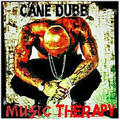 Music Thearapy de Cane Dubb