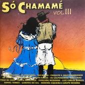 Só Chamamé, Vol. 3 von Various Artists