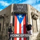 Conceptos de NG2