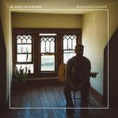 Running Dream de Blake Skidmore