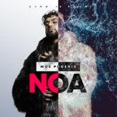 Noa von Moe Phoenix