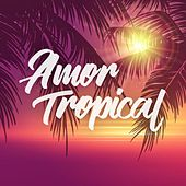 Amor Tropical di Various Artists